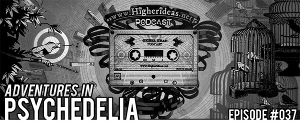 Higher Ideas Podcast #037