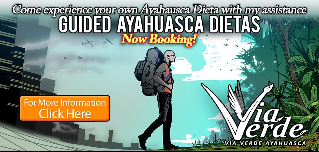 Ayahuasca Dieta Peru