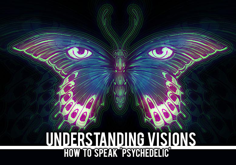 Understanding Visions
